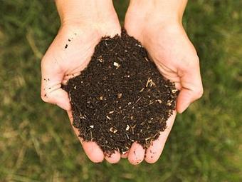 Компост. Фото с сайта ways2gogreen.com